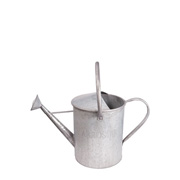 Tin Watering Can Large
